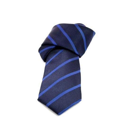 Picture of Blue Regimental Jacquard Silk Tie - 8 cm. wide